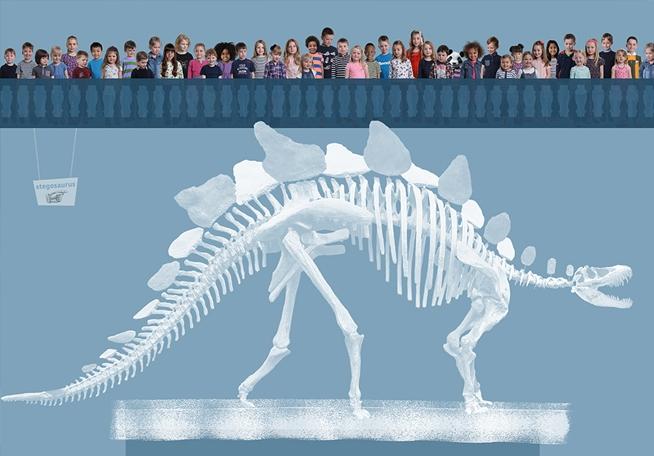 Dinosaur Bones – Lorna Freytag