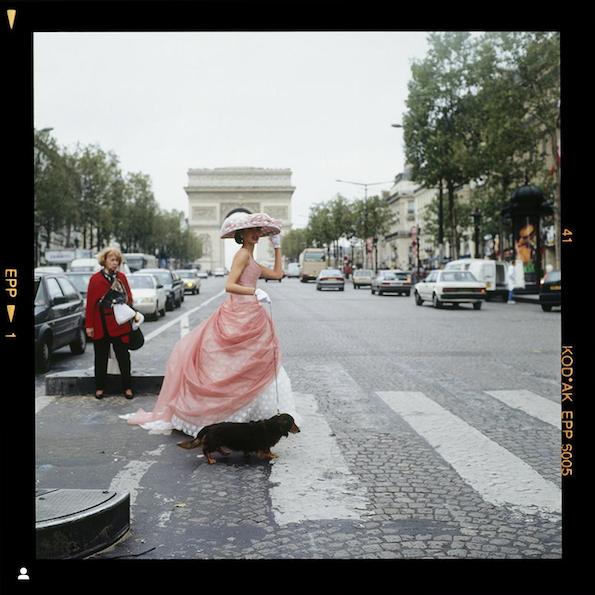 Homage to Style – Sarah Daw Autumn 2019